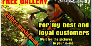 Free_gallery_12